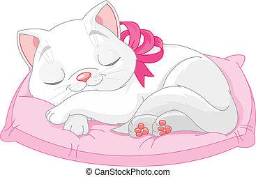 Süße weiße Katze.
