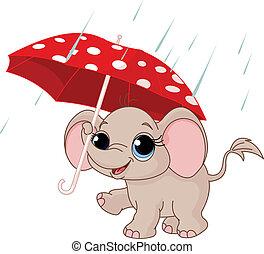 Süßer Baby-Elefant unter dem Schirm