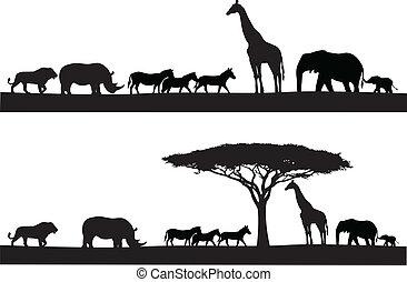 Safari Tiersilhouette