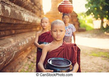 sammeln, essen, buddhist, neuling, mönche