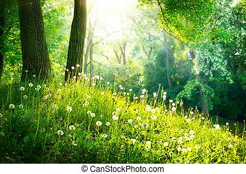 schöne , landschaft., fruehjahr, nature., bäume, grünes gras