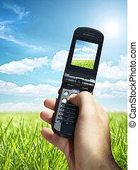 schöne , sommer, gemacht, feld, beweglich, foto, telefon, grün