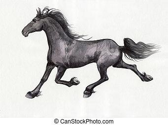 Schwarzes Pferd.