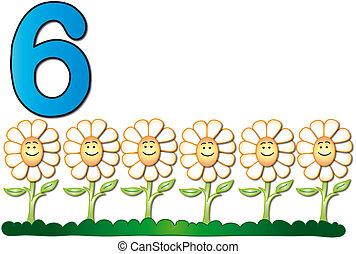 sechs, zahl