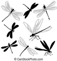 Silhouette von Libellen,