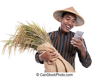 smartphone, reis, korn, während, besitz, landwirt, gebrauchend