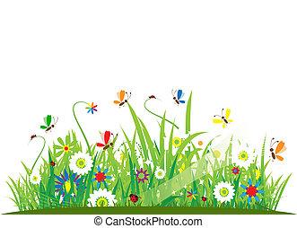 Sommerwiese wunderschön