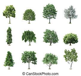 Stellt Bäume. Vector