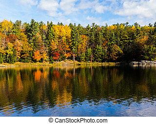 Stilvolle Herbstfarben, die sich im Wasser reflektieren.
