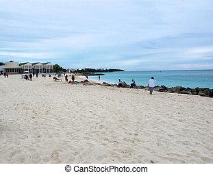 Strand auf der Grande bahama Insel.