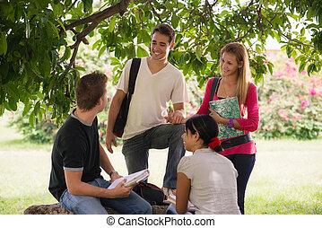 Studenten treffen sich und bereiten den Test vor