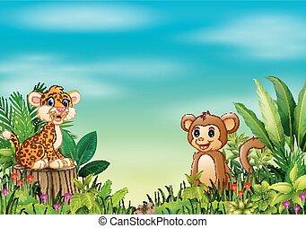 stumpf, affe, sitzen, leopard, natur, baum, szene, baby