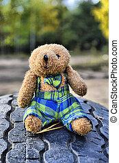 Teddybär in einem Autoreifen.