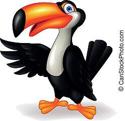 Toucan Vogel Cartoon