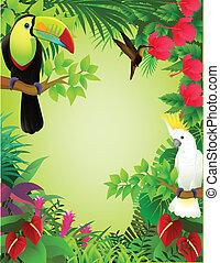 tropische , dschungel, vogel