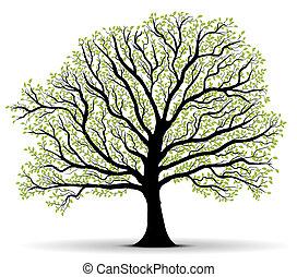 Umweltschutzgrüner Baum