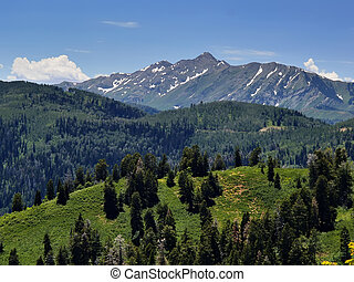 Utah Mountain - 2.