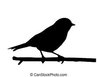 Vector Silhouette des kleinen Vogels auf Zweig