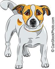 Vector Sketch Dog Jack Russell Terrierrasse