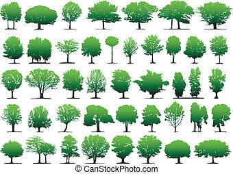 Vektorbäume