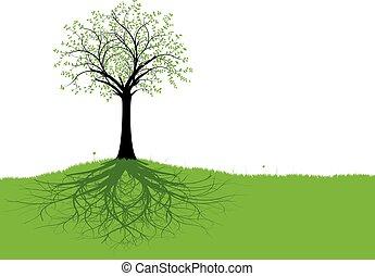 Vektorbaum und Wurzeln