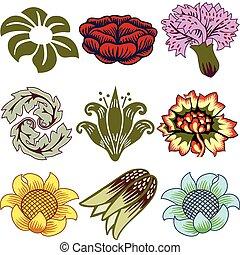 Verschiedene einzigartige Blumen