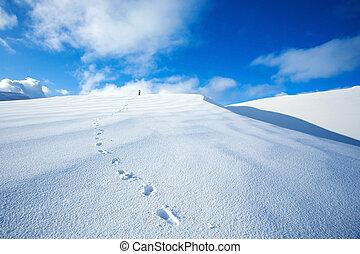 verschneiter , reisen, entlang, berge