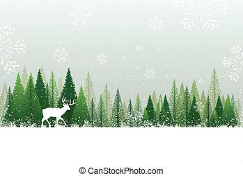 verschneiter , wald, hintergrund, winter