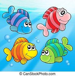 vier, reizend, fische