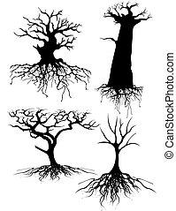 Vier verschiedene alte Bäume