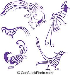vogel, abbildung