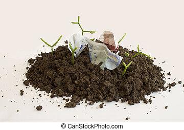 wachsen, geld