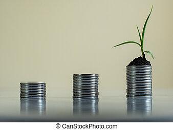 wachsen, geldbetrieb, geldmünzen