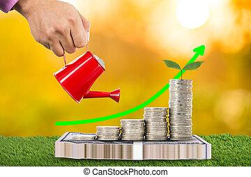 wachsen, gießen, pflanze, buechse, geld