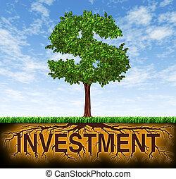 wachstum, finanzielle investition