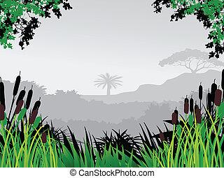 wald, hintergrund, natur