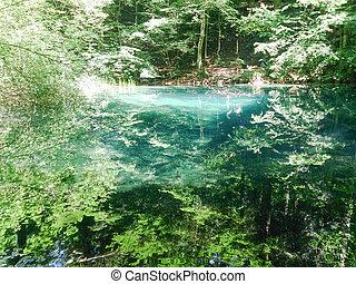 Waldfluss in Bergen, Naturlandschaft mit Bäumen und Fluss.