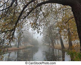 warm, morgen, wald, farben, herbst, see, schöne , nebel