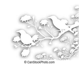 wild, freisteller, vögel