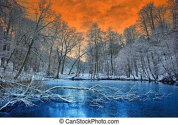 winter, spektakulär, aus, sonnenuntergang, wald, orange