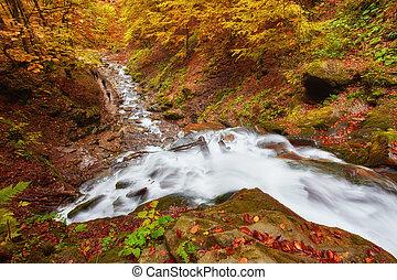 Wunderschöner Wasserfall am Bergfluss in bunten Herbstwald mit roten und orangen Blättern bei Sonnenuntergang.