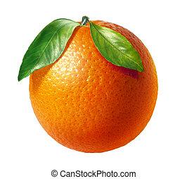 zwei, blätter, hintergrund., fruechte, orange, frisch, weißes