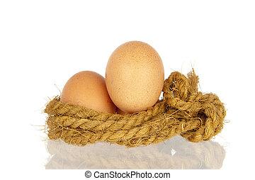 Zwei Eier im Seilnest.