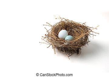 Zwei Eier im Vogelnest.