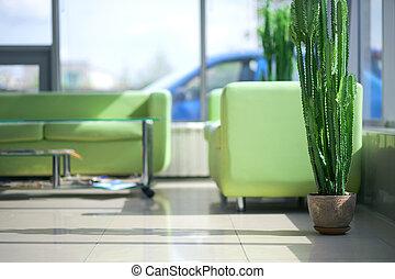 Zwei grüne Sofas im Inneren